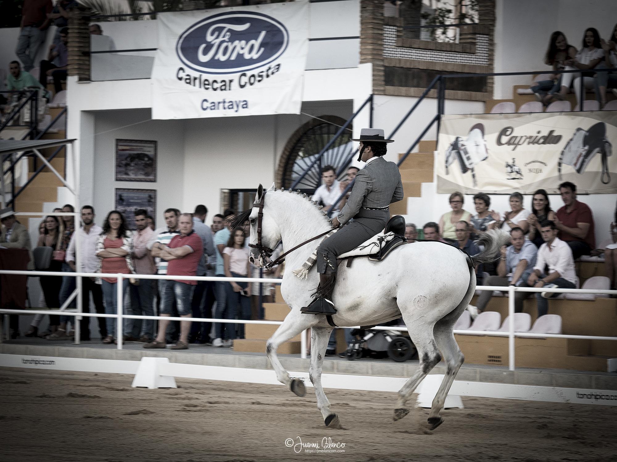 Jose Mª Cruz con Gabacho en unos cambios de pie al galope