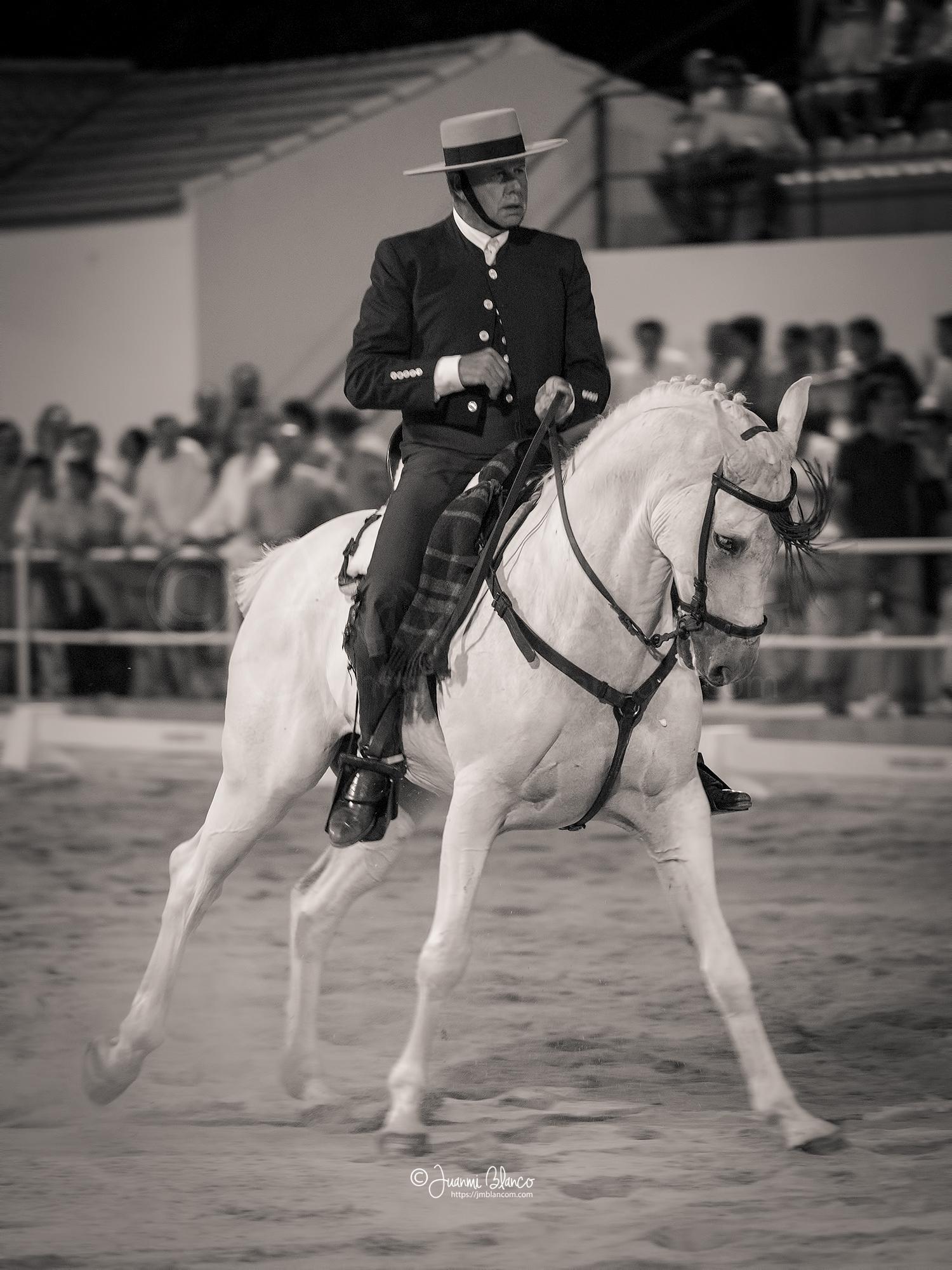 Carmelo Santana con Guajiro en unos apoyos al galope