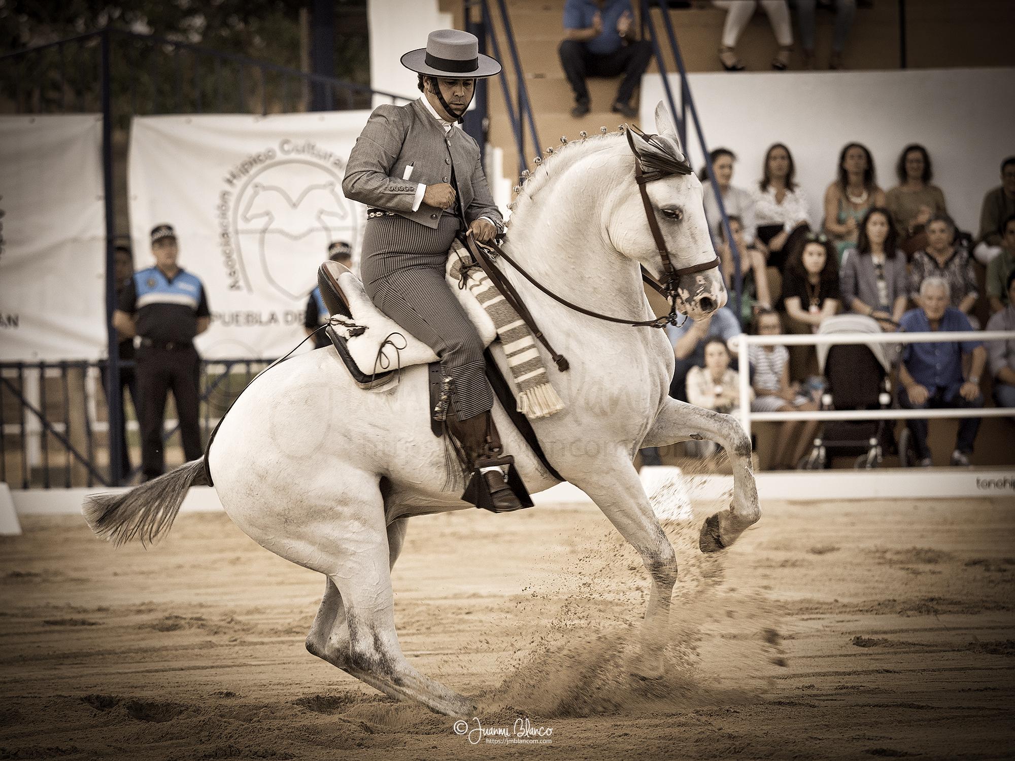 José Mª Cruz con Gabacho en unas vueltas sobre las piernas