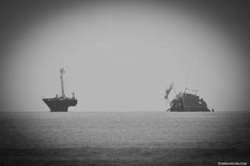 Caprichos de Doñana. El Barco del Arroz